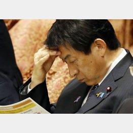 手だてなし(C)日刊ゲンダイ
