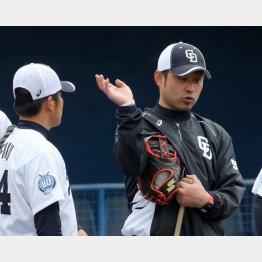 選手にアドバイスする朝倉コーチ(C)日刊ゲンダイ