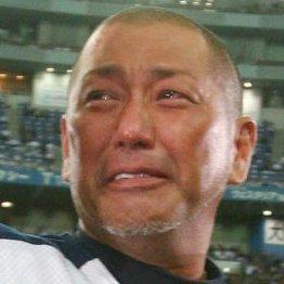 この男の涙は軽い(C)日刊ゲンダイ