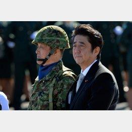 自衛隊観閲式の安倍首相(C)日刊ゲンダイ