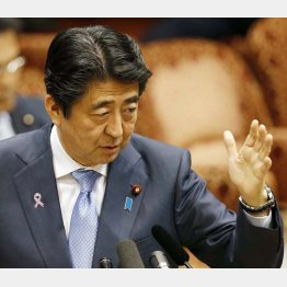 支持率は急落…(C)日刊ゲンダイ