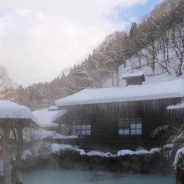 秋田乳頭温泉郷の混浴露天風呂は「湯めぐり帖」がお得