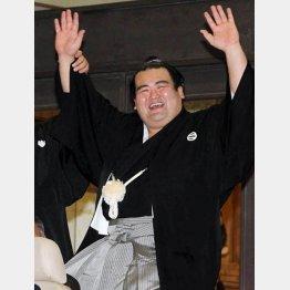 琴奨菊の綱とりがかかっているのに(C)日刊ゲンダイ