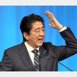 13日の第83回自民党大会で演説する安倍首相(C)日刊ゲンダイ