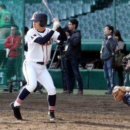 堂々の打撃フォーム(C)日刊ゲンダイ
