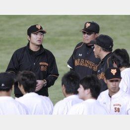 練習前に外野に集まる高橋監督(左)ら(C)日刊ゲンダイ