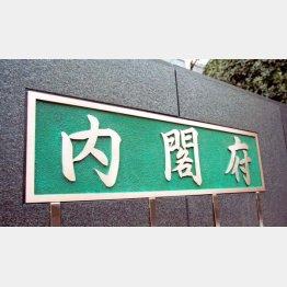内閣府で議論(C)日刊ゲンダイ