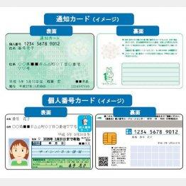 通知カードと個人番号カードのイメージ(国税局・税務署のHP)