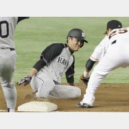 藤波が果敢に三塁を陥れた(C)日刊ゲンダイ