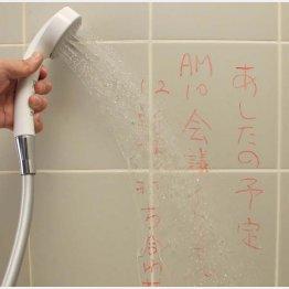 「Bath Crayon」/(C)日刊ゲンダイ