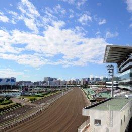 「品川人気」で京浜急行沿線が「住みたい街」に