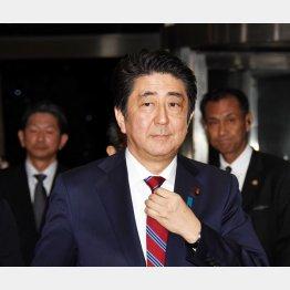 選挙アピールしか頭にない(C)日刊ゲンダイ