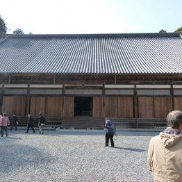 「平成の大修理」終えた松島・瑞巌寺に伝わる独眼竜の情熱