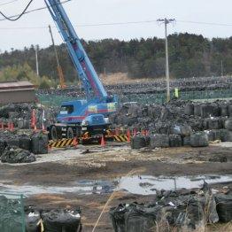 <第15回>5年間で福島県の震災関連死は2000人超