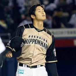 日本ハム大谷の立ち上がりの悪さは速球派大投手の証し
