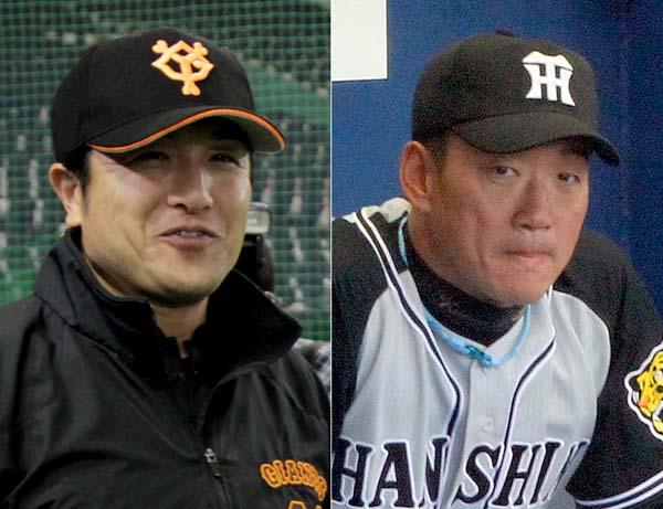 巨人高橋監督(左)と阪神金本監督(C)日刊ゲンダイ