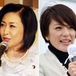 今井絵理子、三原じゅん子…有名人候補たちに早くも明暗
