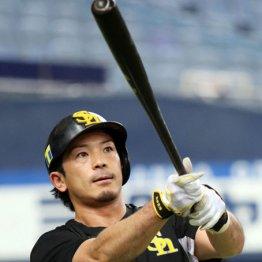 40本100打点を公約…松田がこだわる「25円」の違いとは?