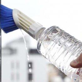 【ペットボトル大型ブラシ】掃除はもちろん旅先でも重宝