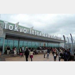 航空券の価格比較サイトは人気(C)日刊ゲンダイ