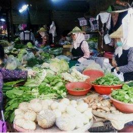 市場には新鮮な野菜がズラリ(提供写真)