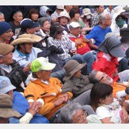 シュワブ・キャンプで座り込み抗議を続ける沖縄県民(C)日刊ゲンダイ