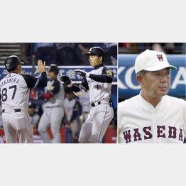 この日本塁打を打った鳥谷(右)と野村徹・元早大監督(C)日刊ゲンダイ