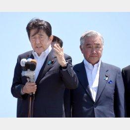 参院選に向けて岩城光英氏の応援演説に臨む安倍首相(C)日刊ゲンダイ