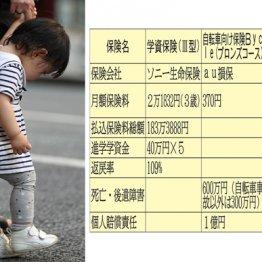 【子供たち】タラちゃんは学資保険、カツオは自転車保険