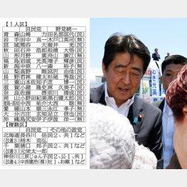 苦戦、激戦が予想される20選挙区(C)日刊ゲンダイ