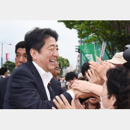 10日は奈良で有権者とタッチ(C)日刊ゲンダイ