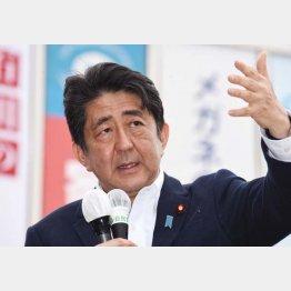 もっぱら1人区を遊説(C)日刊ゲンダイ