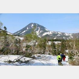 日本百名山の羅臼岳を望む(C)日刊ゲンダイ