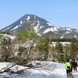 世界自然遺産への登録から10年 北海道・羅臼町を味わう