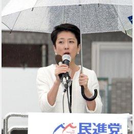 連日参院選の応援演説(C)日刊ゲンダイ