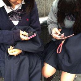 <第5回>次の選挙からデジタル・ネーティブ世代が参加する