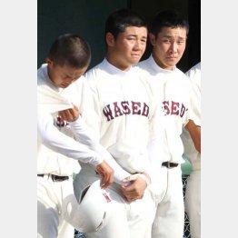 清宮幸太郎はすでに通算50本塁打を記録(C)日刊ゲンダイ