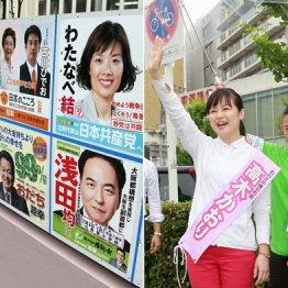 【大阪】最後の1議席めぐるオンナの戦いは純情派vs美魔女