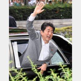 国民の資産を犠牲に(C)日刊ゲンダイ