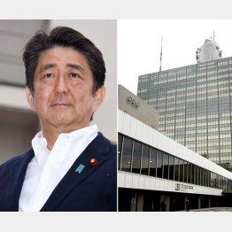 NHKには「公選法違反」の指摘も(C)日刊ゲンダイ