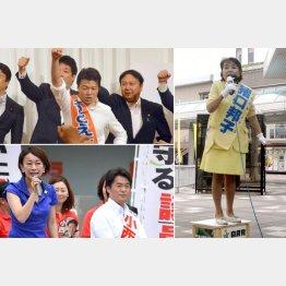 左から時計回りに、ドンがバックアップの元栄太一郎、猪口邦子、焦る小西洋之(C)日刊ゲンダイ