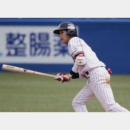 すでにメジャー級(C)日刊ゲンダイ