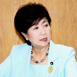 小池百合子氏は真っ白なスーツで都知事選の覚悟を示した