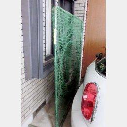 ガレージではトス打撃を(C)日刊ゲンダイ