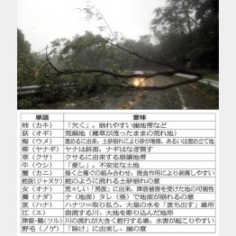 災害とはおよそかけ離れているような地名に「災害のサイン」が(C)日刊ゲンダイ