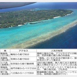 北見けんいち氏の別荘がある与論島(C)日刊ゲンダイ