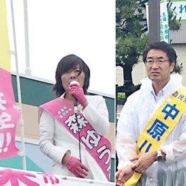 【新潟】野党・森裕子 圧倒的な中高年女性人気でリード