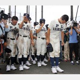 敗戦に頭を下げる「最後のPL野球部員」