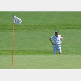 夏休みにゴルフを楽しむ安倍首相(C)日刊ゲンダイ
