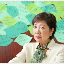 選対事務所の壁にはメッセージがギッシリ(C)日刊ゲンダイ
